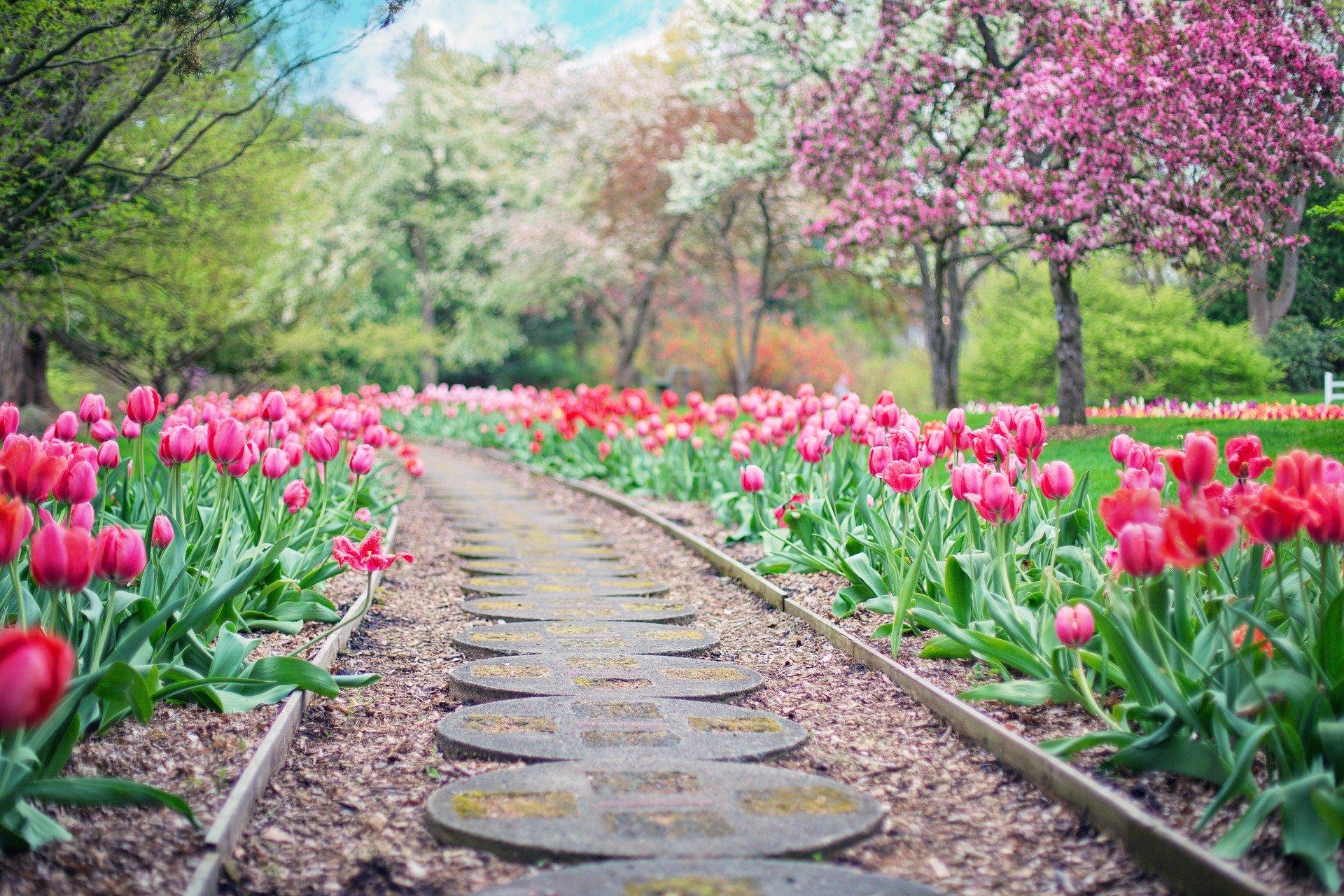Drömträdgården för din BRF